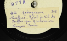 """Accéder à la page """"Nombres ; Histoire de voleurs de buffles / Boloutsake, Vlaantzakouamleka, voix. Nombres. Histoire de buffles détruisant les récoltes / Bezara, voix"""""""