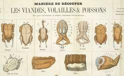 Gros manuel de la cuisinière bourgeoise contenant un guide complet des devoirs qu'ont à remplir les personnes qui se destinent au service dans les maisons bourgeoises...