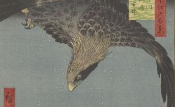 Hiroshige. Meisho Edo hyakkei : Fukagawa-suzaki-jūmantsubo. BOITE FOL-DE-10
