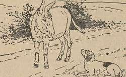 Contes de fées, par les frères Grimm, 1910