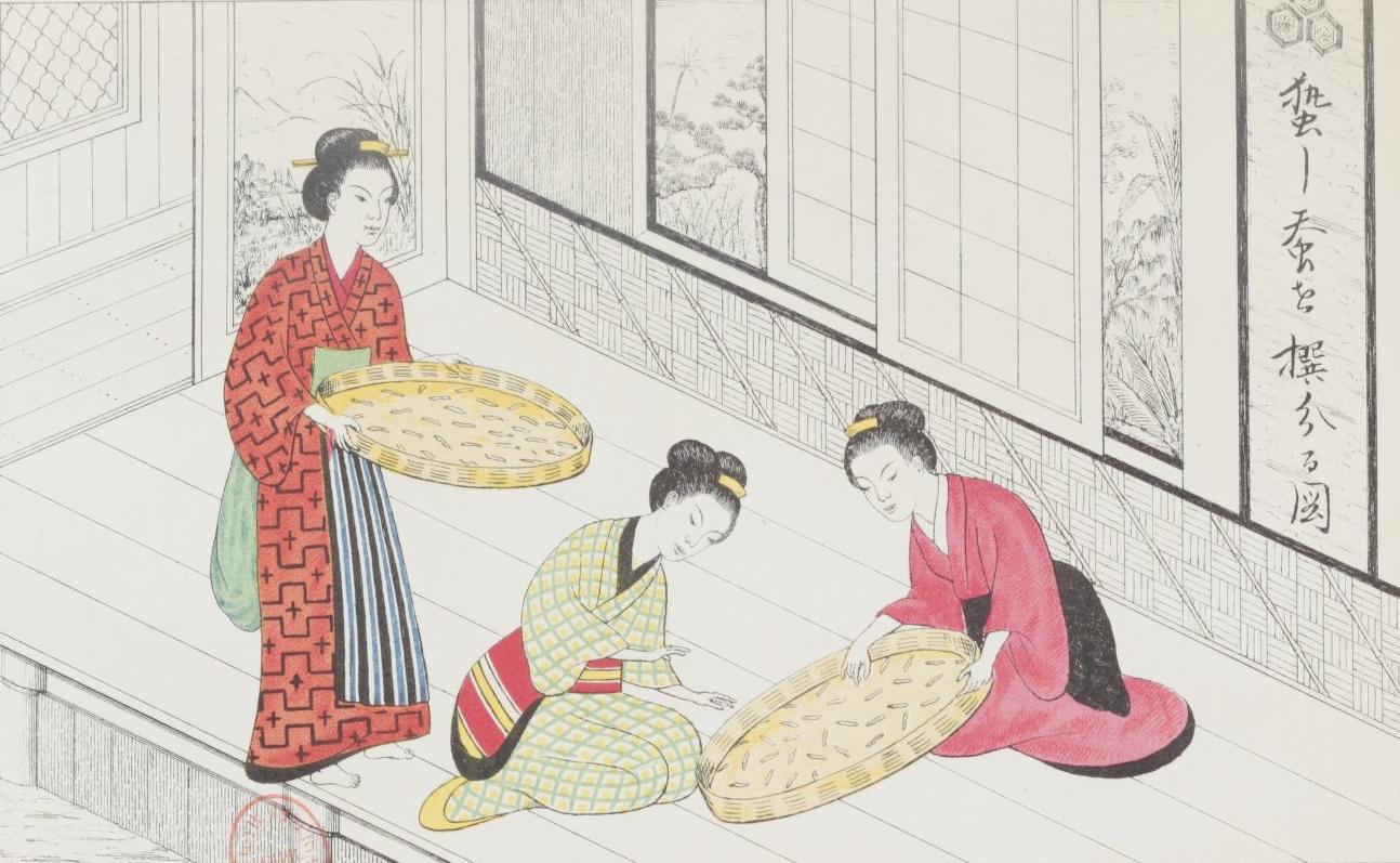 """""""Manière de trier les vers à soie prêts à filer"""". Sira-Kawa, Traité de l'éducation des vers à soie au Japon, 1868. S-34489. Pl. XIV"""