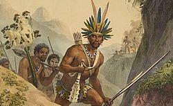 Voyage pittoresque et historique au Brésil, ou Séjour d'un artiste français au Brésil, depuis 1816 jusqu'en 1831 inclusivement / par J.-B. Debret