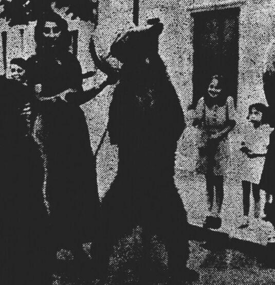 Miarka la fille à l'ourse, à Verdun. Image publiée à Verdun le 17 juin 1939 dans le journal : Bulletin meusien