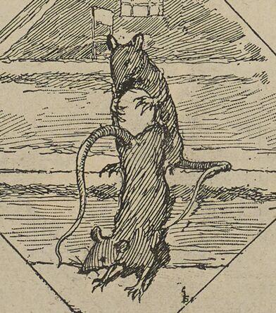 Rats montant des œufs au grenier. Image publiée à Boulogne-sur-Mer le 28 février 1892 dans le journal : L'Indépendant de Boulogne-sur-Mer. Supplément illustré