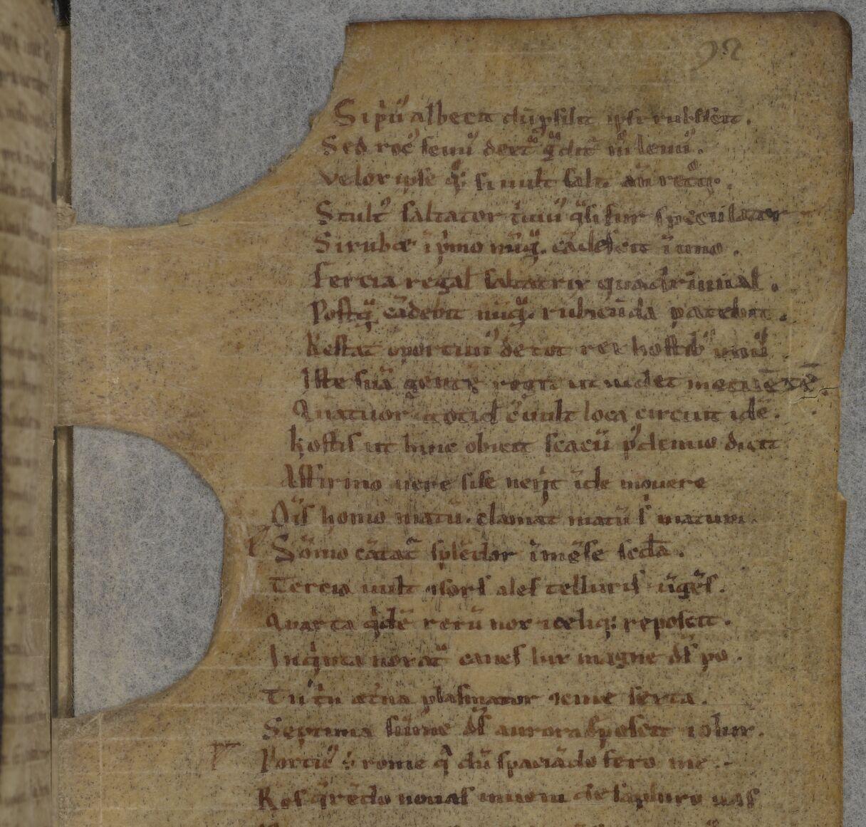 Extreme parchment