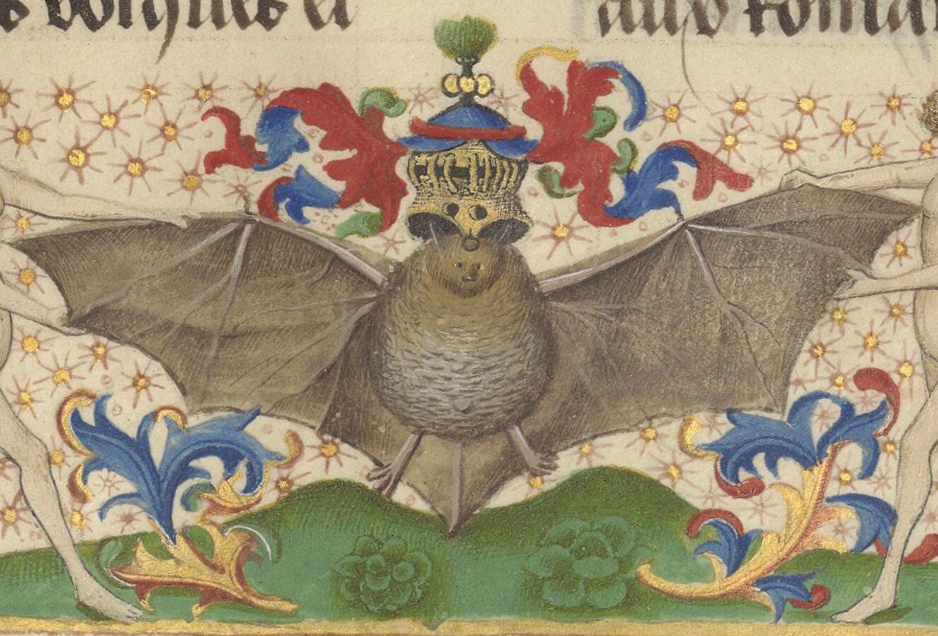 Crested bat