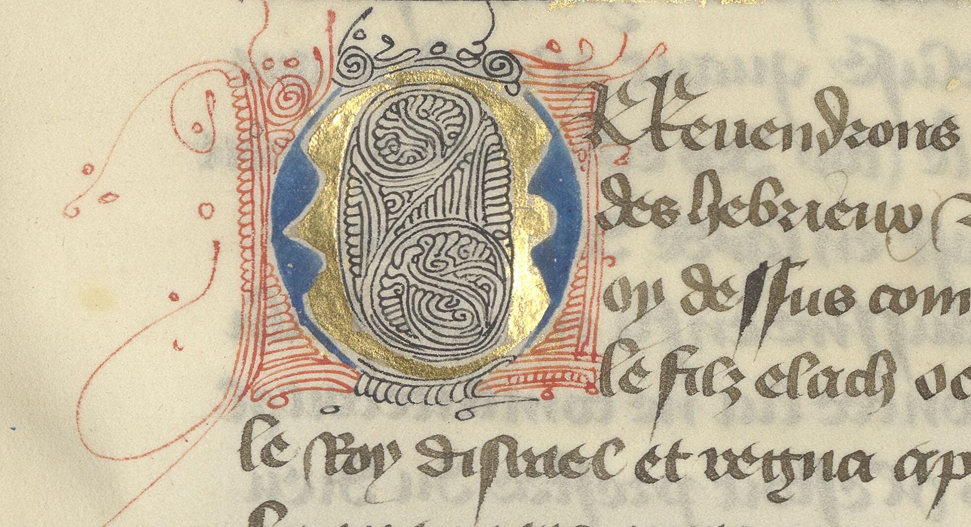 Parti-colored O with pen flourishes