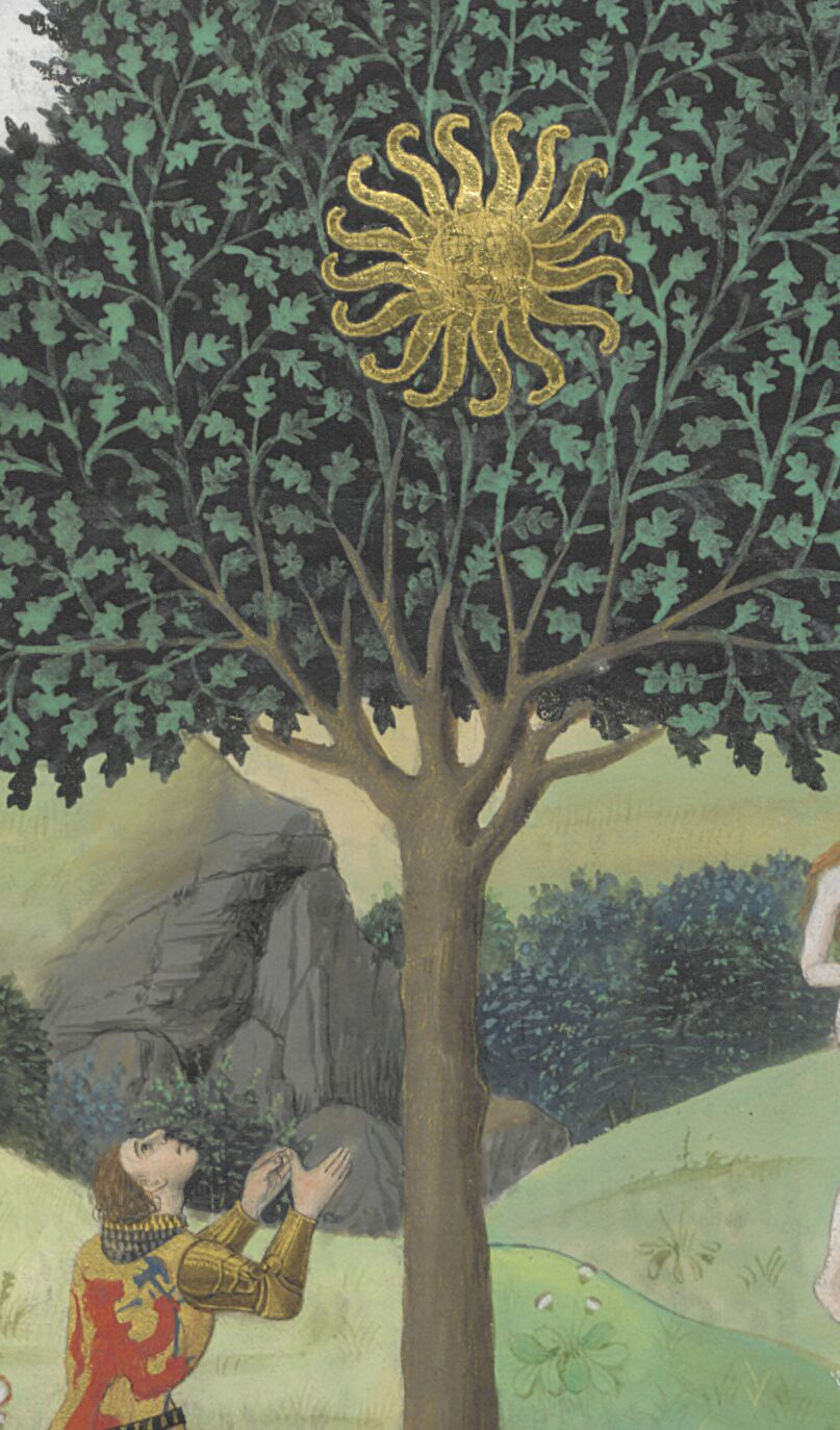 Alexander visits the Trees of the Sun and the Moon
