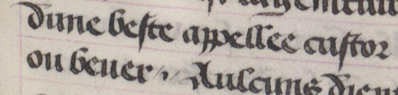 PLATEARIUS, « Livre des symples medichinos, autrement dit Arboriste, continué selon le A, B, C. »