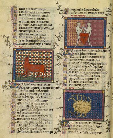 Иллюстрация из Бревиария Любви, Матфре Эрменго, XIV век.