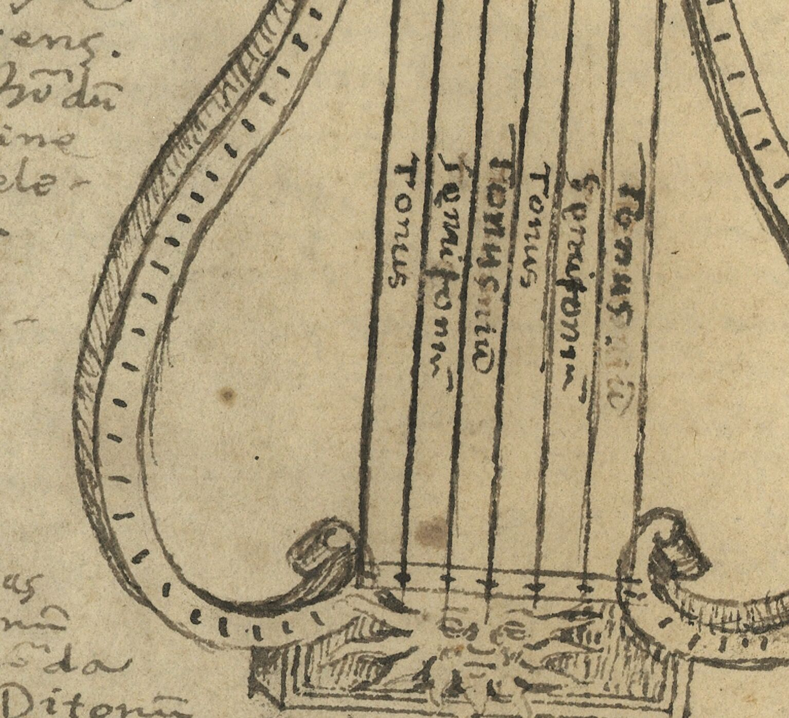 Lyre theory