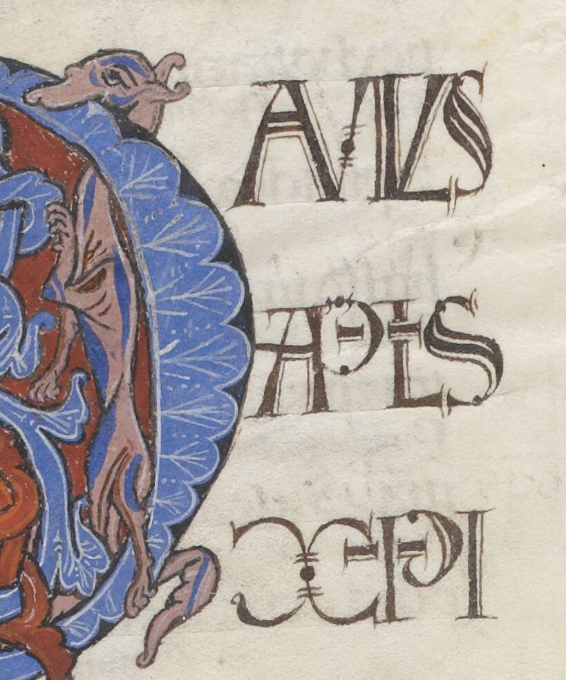APLS XPI