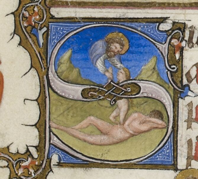 Creation of Eve in historiated S