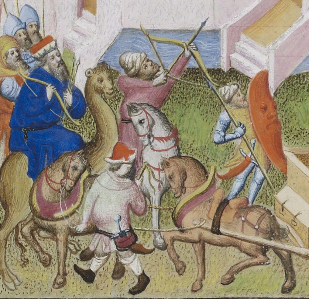 Battle Camel