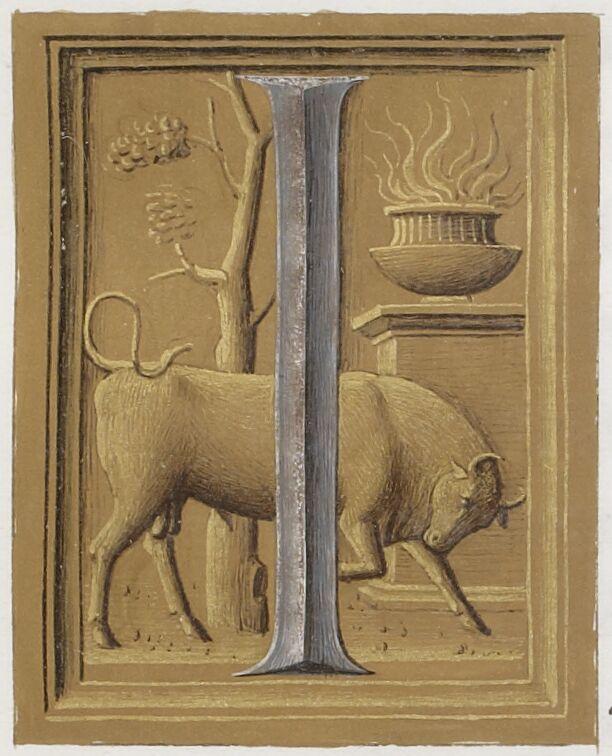 Bull in Ovid's I