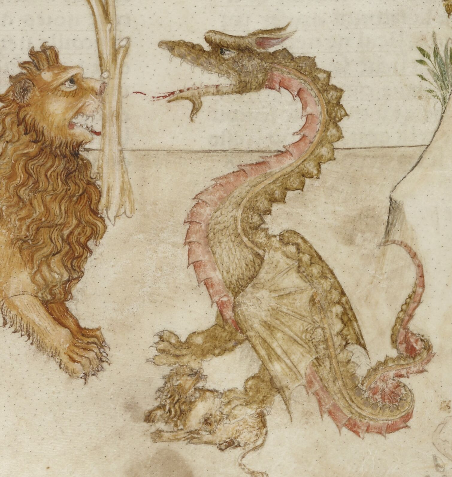 Dragon steals a lioncub